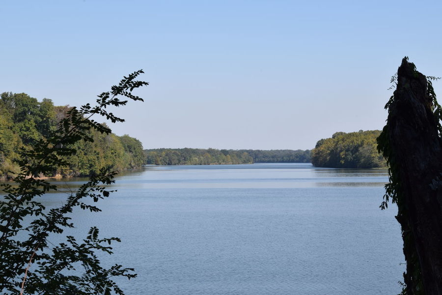 Alabama River ...Alabama River Beauty In Nature Landscape Outdoors Water River River View Montgomery, Al. Hiking❤ Alabama Outdoors Hiking Adventures