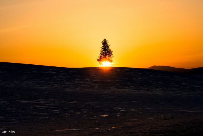 Hokkaido Japan Biei 夕焼けの夕陽のき