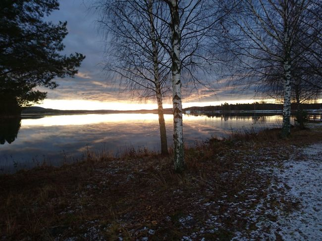 Reflection Tree Sunset Water Lake Nature Sky Reflection Lake Beauty In Nature Outdoors Scenics Cloud - Sky No People Middle Of Sweden Hälsingland November Norrland Varpen Sverige Bollnäs Lake Varpen