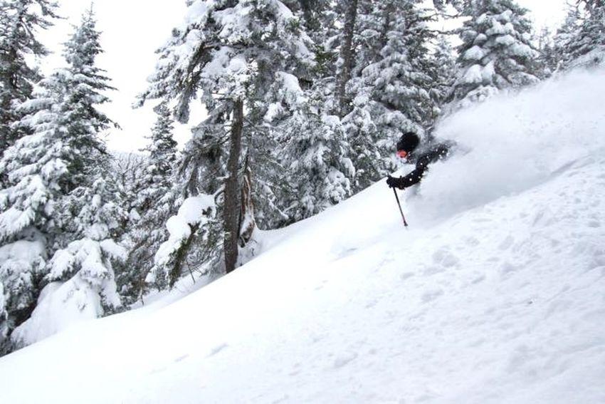 So fresh Vermont Powderdays Backcountry Skiing