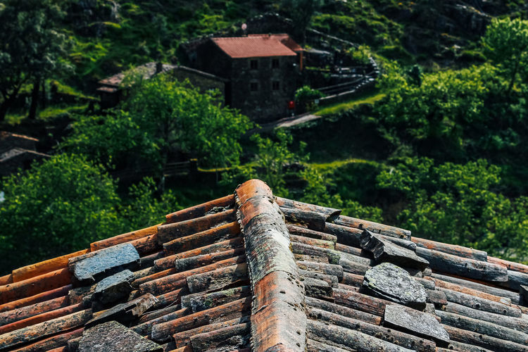 High angle view of roof and trees in forest