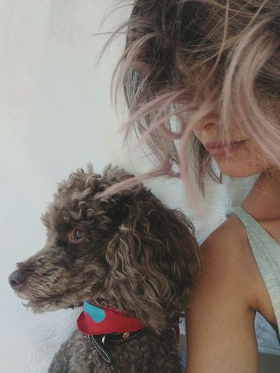 Poodle🐩 Selfie With My Dog Us Together ♥ Profile My Dog Is A Model  Pets Dog Headshot Close-up