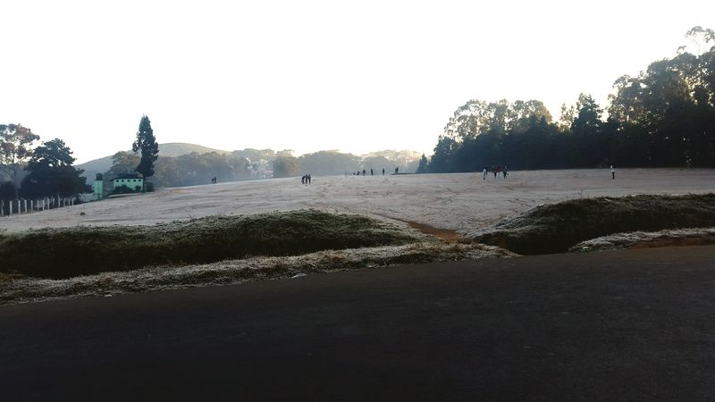 Shillong Frost Nature EyeEm Nature Lover Nature Photography