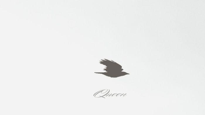 Birds In Flight Montana