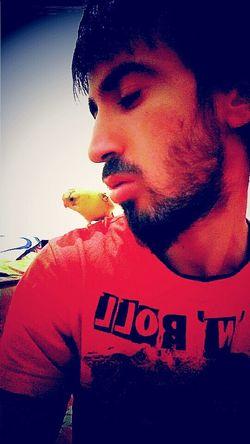 Hello World Hi! Günaydın Small And Swift Mybird Ilovemypet Talking Pictures