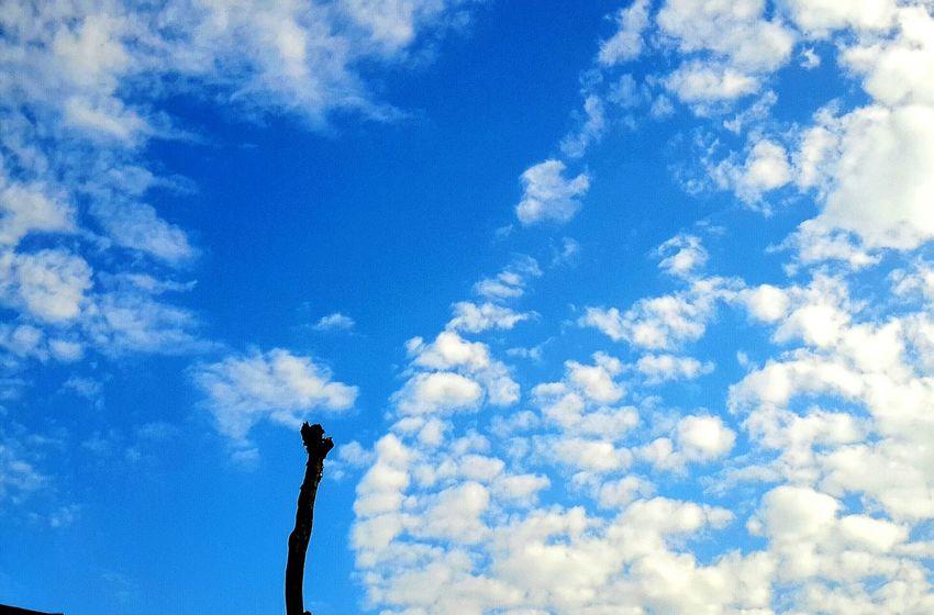 Sky ท้องฟ้าของวันนี้ บันทึก ระหว่างทาง