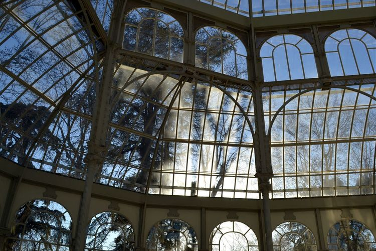 Silver beams Palaciodecristal Madrid CrystalPalace Crystal Palace Beams Sun Glass Trees Sky Showcase: February The Architect - 2016 EyeEm Awards Your Design Story The Secret Spaces