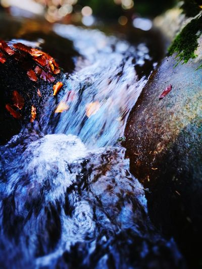 Water River Nature No People Outdoors Waterfall Day Tree Hot Spring Close-up Wilderness Autumn Power In Nature Beauty In Nature Rock - Object Motion Nature