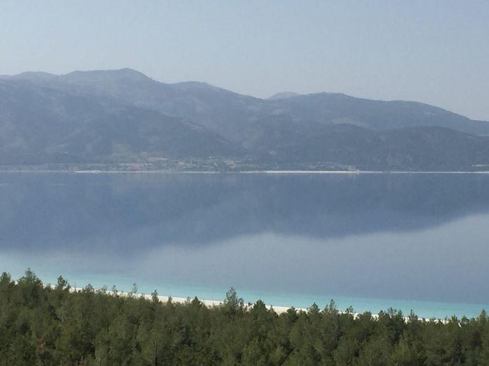 Nonfilter Mirror Mountain Salda Lake Pinus Tree Turkey