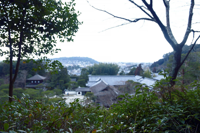 Architecture Building Building Exterior Built Structure Day Field Green Color Growth House Kyoto Land Landscape Mountain Nature No People Outdoors Plant Residential District Rural Scene Sky Tree