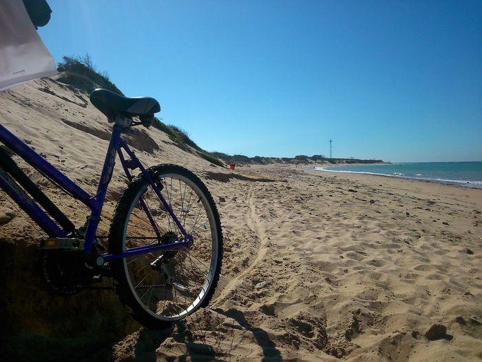 Un Paseo En Bicicleta Holiday Beach Relaxing