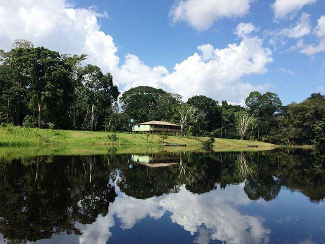Manaus reflexos Taking Photos Enjoying Life Water Reflections Reflex The Traveler - 2015 EyeEm Awards Share Your Adventure The Great Outdoors - 2015 EyeEm Awards