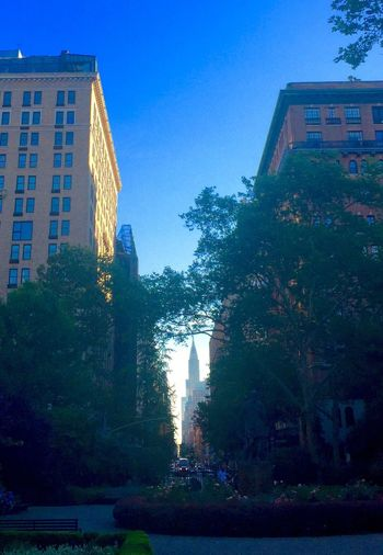 Summer morning (Gramercy Park) Building Exterior Architecture Built Structure Tree Clear Sky City Low Angle View Blue Tall - High Outdoors Day Gramercy New York City New York Sky Skyscraper Urban Skyline City Life Tall Office Building Battle Of The Cities The City Light