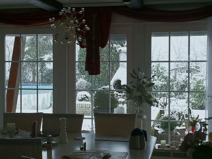 Interior Views Through The Window it was heavily Snowing Chairs And A Table View Into The Garden From Inside To Outside Snowy Days... Windows Window View Here Belongs To Me Scenic Private Home Our Home And Garden at Winter Time , No People Interiors