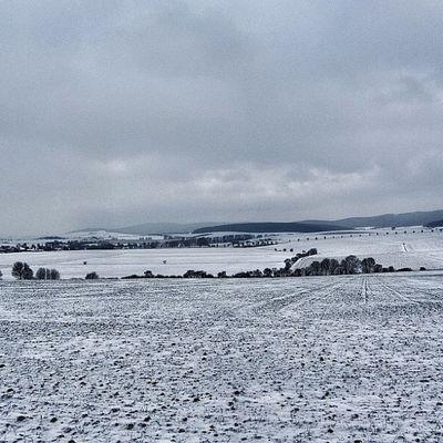 Ohe Winter Trail Run Laufen
