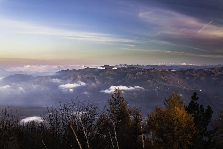 passo del penice Bobbio Cloud - Sky Emilia Romagna Forest Landscape Mountain Mountain Peak Nature Passo Del Penice Penice Piacenza Piacenza, Italy Pine Tree Sky Sunset Tourism Tree
