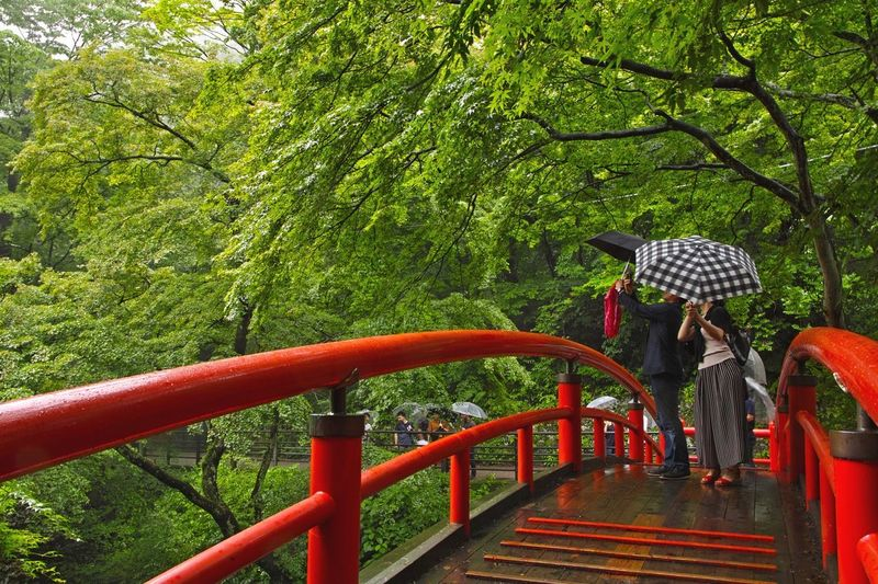 People standing on footbridge