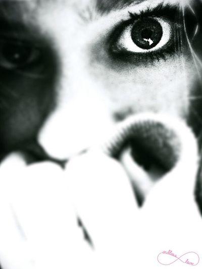 Black & White Black And White Eyes Beautiful
