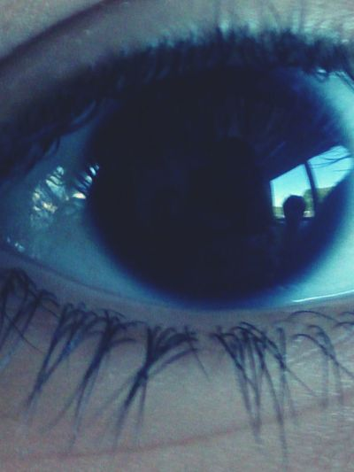 Eyes Reflection Reflexion Of Self