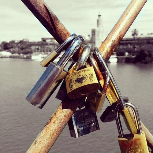 Love Cityscapes Colorsplash Movilgrafias