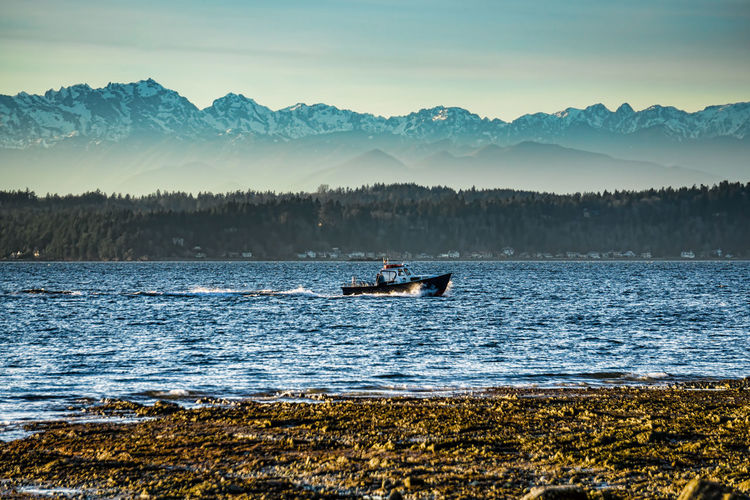 A boat cruises across the Puget Sound with the Olympic Mountains in the distance. Water Beauty In Nature Nautical Vessel Sky Scenics - Nature Transportation Mountain Mode Of Transportation Nature Tranquility Tranquil Scene Sea Non-urban Scene Outdoors Real People Day Idyllic Men Olympic Mountains Puget Sound Boat