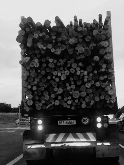 Wood stacked nicely and shipped to make paper! Southafrica men Working Hard even on Saturday I Respect Each Of Them! RichardsBay In Kzn Province👏