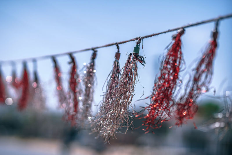 Wave Swirls Colors Decor Hanging Hanging Out Hangs Natural Red Wave Waving Air Background Backgrounds Color Decoration Decorative Different Open Open Air Silver  Swirls Thread Viewexterior Waves White Wire