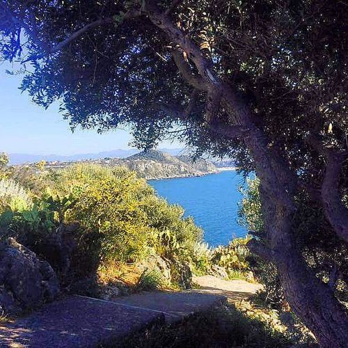 Scorci d'estate Milazzo Today Sicily Picture Instashot Colorfull Lfl Thinkpositive Summer2k15 Summer Beautiful Nofilter Nocrop Valorizziamoci Mood Goodtime Joint Follow Nature Fotogrammi Follow Perspective Life Naturelovers Retiro capo promontorio freedom posting passion