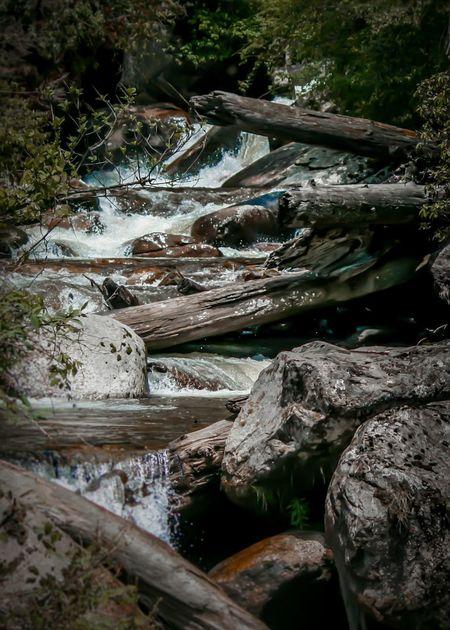 EyeEm Best Shots Landscape Photography Bum La Pass Woods Woodlands Zimithang Arunachal Pradesh Travel Trekking Water River Tree Rock - Object Stream - Flowing Water Landscape Waterfall Flowing Long Exposure Rapid Stream Flowing Water Falling Water