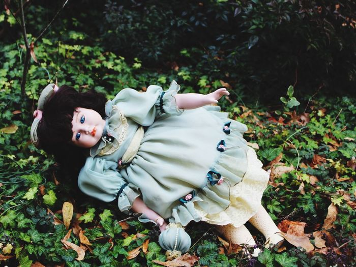 High Angle View Of Doll On Field