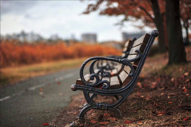 Empty benches at roadside