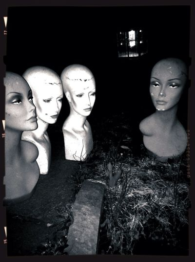 I Just Shot A Mannequin!!
