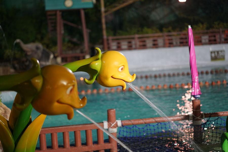 S Speed photographer. Sony Lens EyeEm Selects Thailand