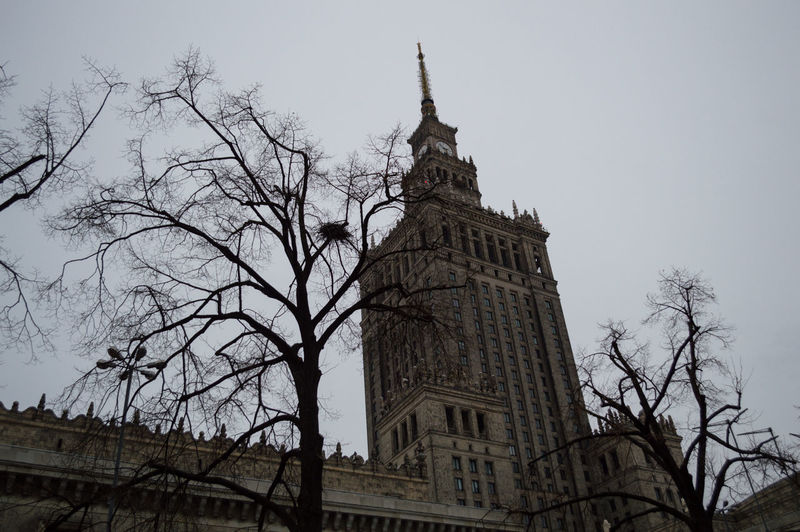 Poland Warsaw Europe Architecture Built Structure Building Exterior Low Angle View Sky Building Tree Bare Tree Tower Belief Religion City Spirituality Tall - High Place Of Worship Branch The Past Nature History Travel Destinations No People Spire  Outdoors Skyscraper Office Building Exterior