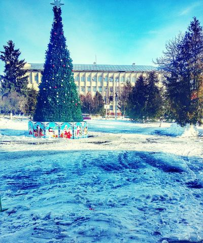 First Eyeem Photo Holidays ☀ Mysity Snowaretired😳 Christmas Tree Lovely Weather Beautifulcity