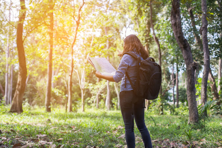 Rear view of woman with map pointing towards trees in forest