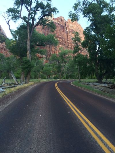 Scenic Route within Zion National Park