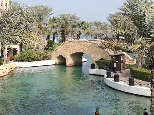 Architecture Travel Destinations Day Tree Water Sky Outdoors No People Vacation Warm Sunny Dubai Bridge - Man Made Structure ArchitectureMadinat Jumeirah Jumeirah Palm Tree Palm Trees