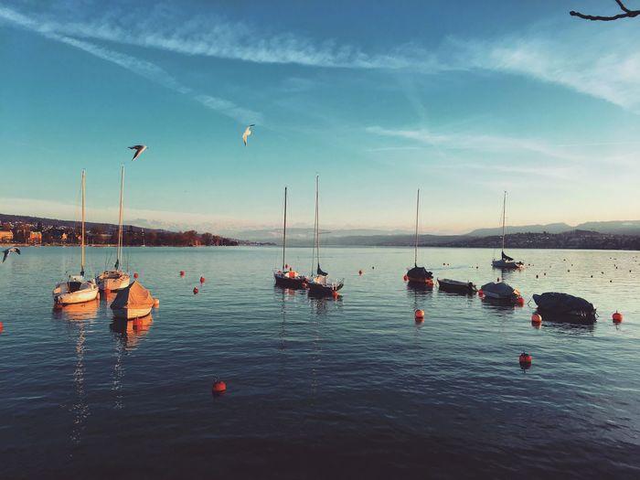 Boats moored on lake