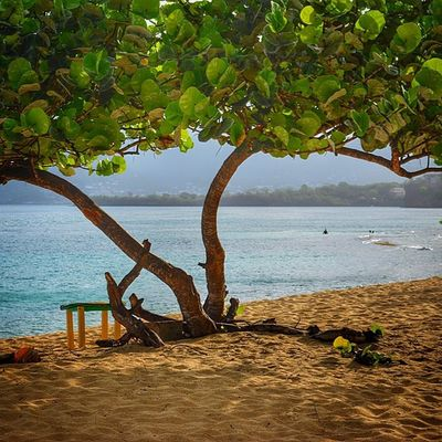 Thebeach Theblueislands Thebeachcontest Grenada Ilivewhereyouvacation Livefunner Ig_caribbean_sea Islandlivity Ig_clubaward Ig_caribbean Worldclassscapes Westindies_colors Westindies_pictures Wu_caribbean Awesome Nature_shooters Natureshots