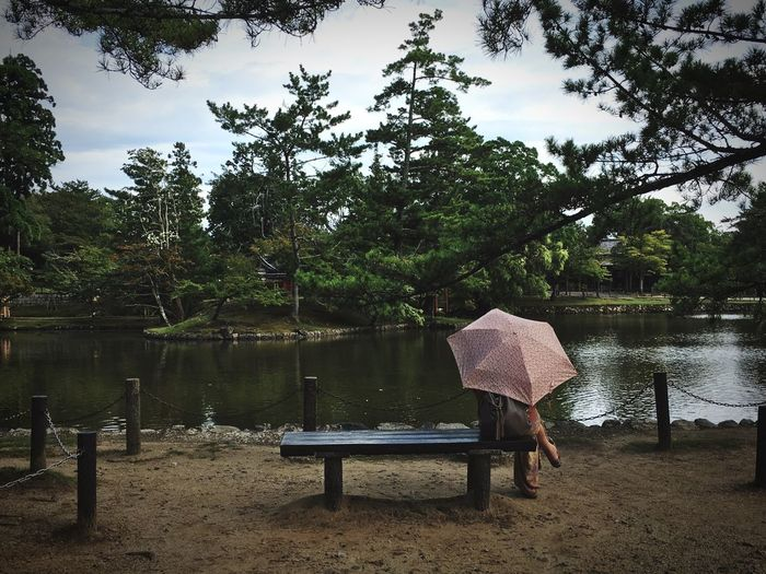 Quiet Lake Nature Tranquility Beauty In Nature Water Sitting Outdoors One Person The Week On EyeEm Japan Scenery Live In The Moment Calm Umbrella Love Yourself The Traveler - 2018 EyeEm Awards The Great Outdoors - 2018 EyeEm Awards