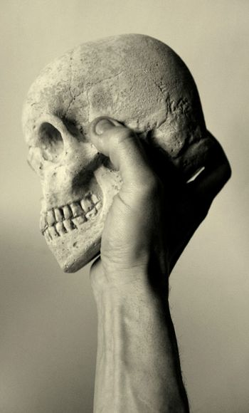 Cropped Hand Holding Human Skull Against Beige Background