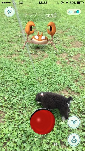 Pokemon Go ポケモン