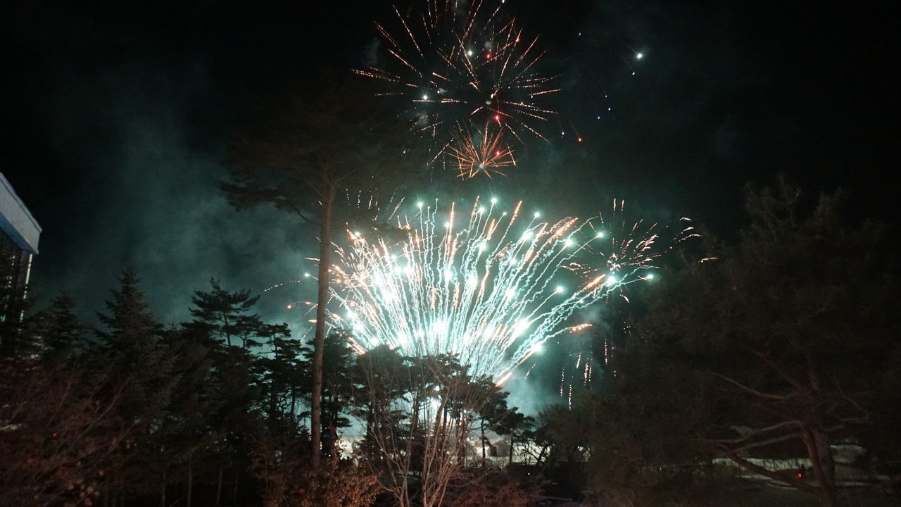 Low Angle View Of Firework Display At Night