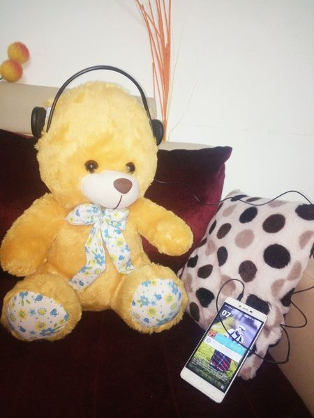 TakeoverMusic ESPYS2016 Yellow Day Childhood Stuffed Toy No People Teddy Bear Indoors  Gift Toy Shool Today Schoollife TEDDY LOVE Teddybearpicnic
