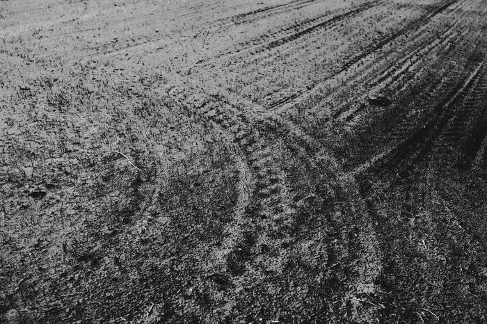 Biebrza Marshes - Kapice in Podlasie - in Poland Backgrounds Blackandwhite Field Furrow Furrows Ground Landscape Lines Monochrome Nature Nature No People Outdoors Plowed Field The Great Outdoors - 2018 EyeEm Awards The Traveler - 2018 EyeEm Awards