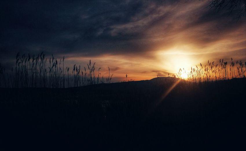 Lisi lake Lake