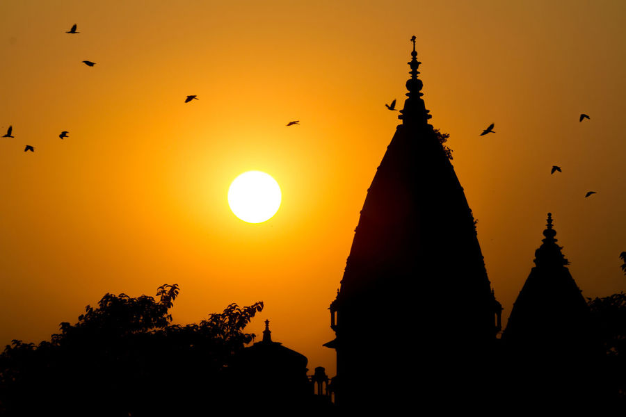 Silhouette of temple and flying birds at sunset by Betwa river, Orchha, India. Architecture Bird Building Exterior Flying Nature Orange Color Outdoors Silhouette Sun Sunlight Sunset Tree