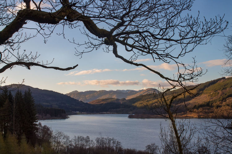 Loch Chon Scotland Trossachs Bare Tree Beauty In Nature Branch Idyllic Lake Landscape Loch Chon Mountain Mountain Range Nature No People Non-urban Scene Outdoors Plant Remote Scenics - Nature Sky Tranquil Scene Tranquility Tree Water