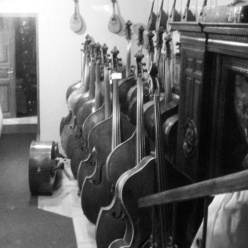 виолончелей стройный ряд черезстекло впервые музыкавоплоти Praha Prague